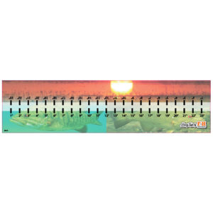 Sunset & Fish Hawg Tape Decal